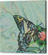 5859 5 Canvas Print
