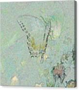 5872 3 Canvas Print