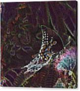 5877 6 Canvas Print
