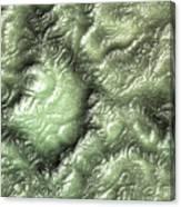 Alien Skin Canvas Print