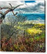 Beautiful Autumn Landscape In North Carolina Mountains Canvas Print