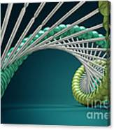 Dna Structure Canvas Print