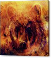 head of mighty brown bear, oil painting on canvas and graphic collage. Eye contact. Canvas Print