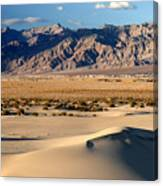 Mesquite Sand Dunes In Death Valley National Park Canvas Print