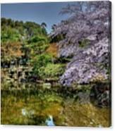 Nara Japan Canvas Print