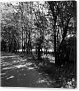 Natchez Trail Canvas Print