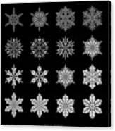 Snowflake Simulation Canvas Print