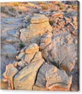 Valley Of Fire Sunrise Canvas Print