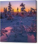 Winter Evening Landscape With Forest, Sunset And Cloudy Sky.  Canvas Print