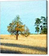 Oil Painting Landscape Pictures Nature Canvas Print