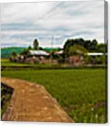 6x1 Philippines Number 123 Rice Fields Panorama Canvas Print