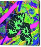 7-30-2015dabcdef Canvas Print