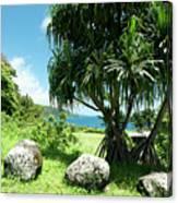 Keanae Maui Hawaii Canvas Print