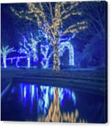 Lights, Christmas, Light, Christmas Tree, Green, Color, Red, Blu Canvas Print