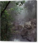 Misty Rainforest El Yunque Canvas Print