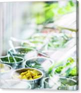 Salad Bar Buffet Fresh Mixed Vegetables Display Canvas Print