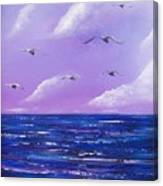 7 Seabirds Canvas Print