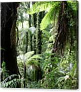 Tropical Jungle 2 Canvas Print