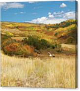 7797 Ranch Of Color Canvas Print