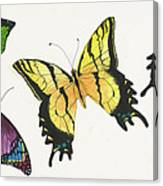 8 Butterflies Canvas Print