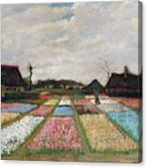 Flower Beds In Holland Canvas Print