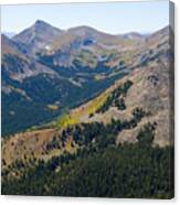 Autumn Tundra Turning To Gold  On Mount Yale Colorado Canvas Print