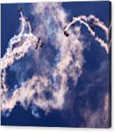 Raf Falcons Canvas Print