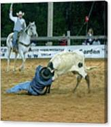 Steer Roping Canvas Print