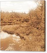 Stream In Autumn, Pocono Mountains, Pennsylvania Canvas Print