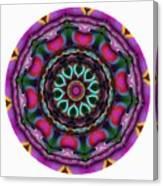 808-04-2015 Talisman Canvas Print