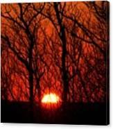 Sunsets Canvas Print