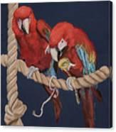 8x10p Canvas Print