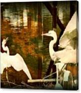 9 Egrets Canvas Print