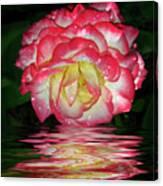 Nice Rose Canvas Print
