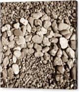 Pebbles 1 Canvas Print
