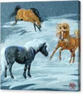 #9 - Ponies In Snow Canvas Print