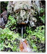 Public Fountain In Palma Majorca Spain Canvas Print