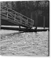 Savannah River  Canvas Print