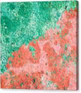 Stone Background Canvas Print