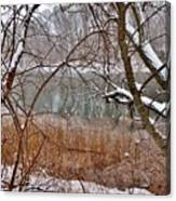 The Bass River In Winter Canvas Print