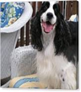 #940 D1036 Farmer Browns Springer Spaniel Happy For You Have A Happy Day Canvas Print