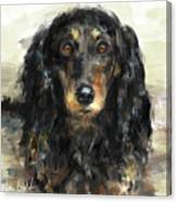 A Beautiful Artistic Painting Of A Dachshund  Canvas Print