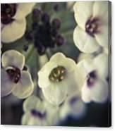 A Beautiful Bouquet  Canvas Print