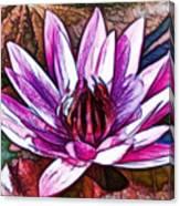 A Beautiful Purple Water Lilies Flower Canvas Print