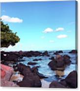 A Beautiful View Of The Sea From Mauritius Canvas Print