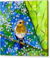 A Bird Canvas Print