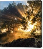 A Blast Of Sunrise Canvas Print