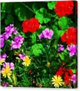 A Bouquet From Bermuda Canvas Print