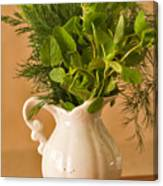 A Bouquet Of Fresh Herbs In A Tiny Jug Canvas Print
