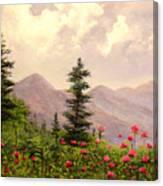 A Breath Of Fresh Country Air Canvas Print